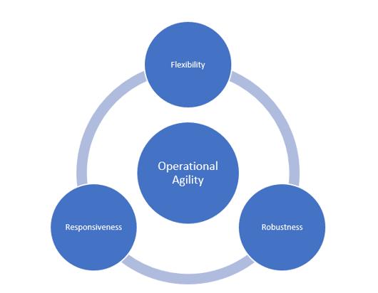 Flexibility Robustness Responsiveness
